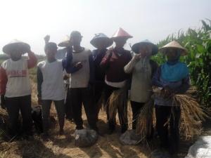 Achdan (dua dari kiri) bersama petani PT3S Desa Kuripan.   Foto: Dahlia